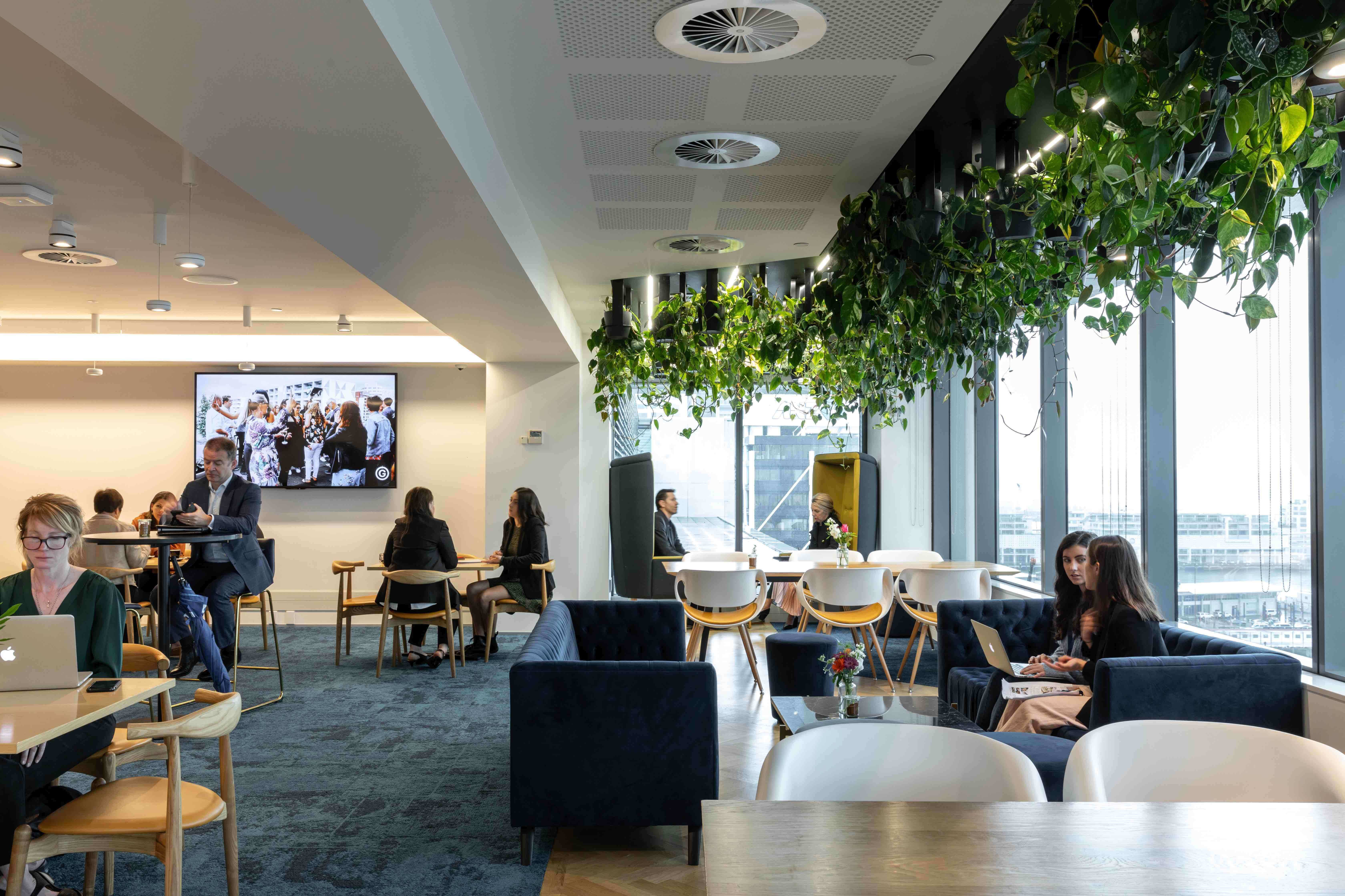 Britomart office shared space rooftop